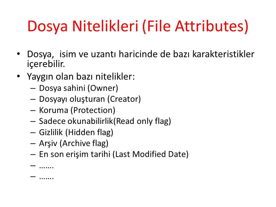 Dosya Nitelikleri (File Attributes)