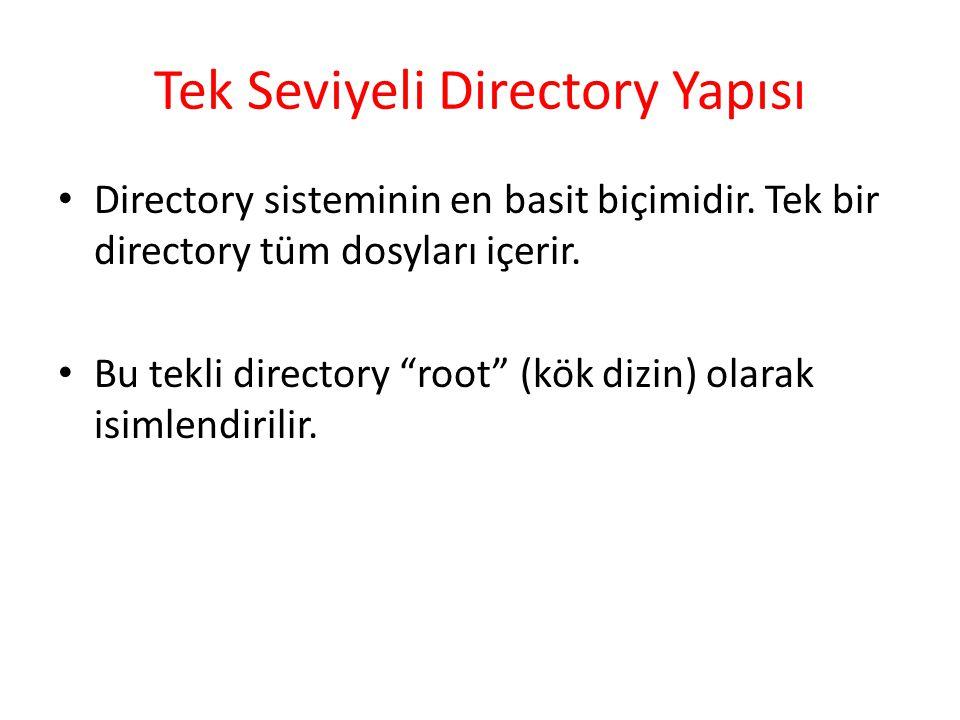 Tek Seviyeli Directory Yapısı
