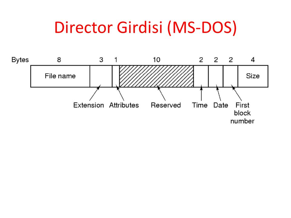 Director Girdisi (MS-DOS)