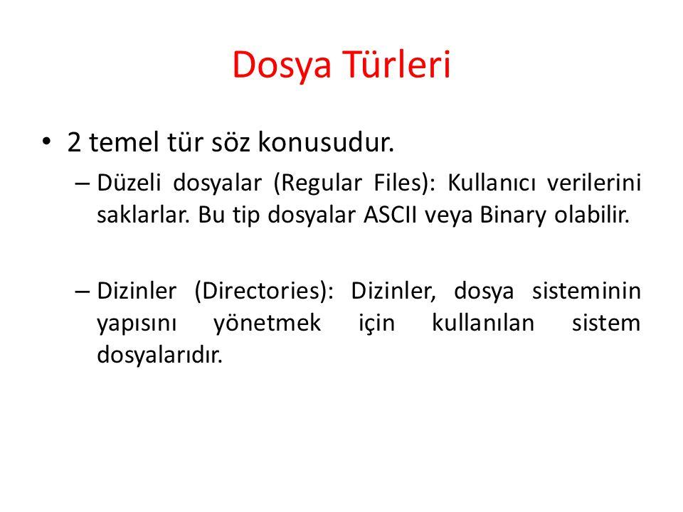 Dosya Türleri 2 temel tür söz konusudur.