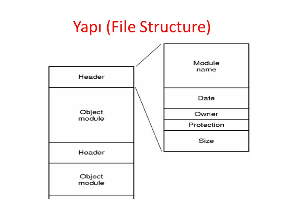 Yapı (File Structure)
