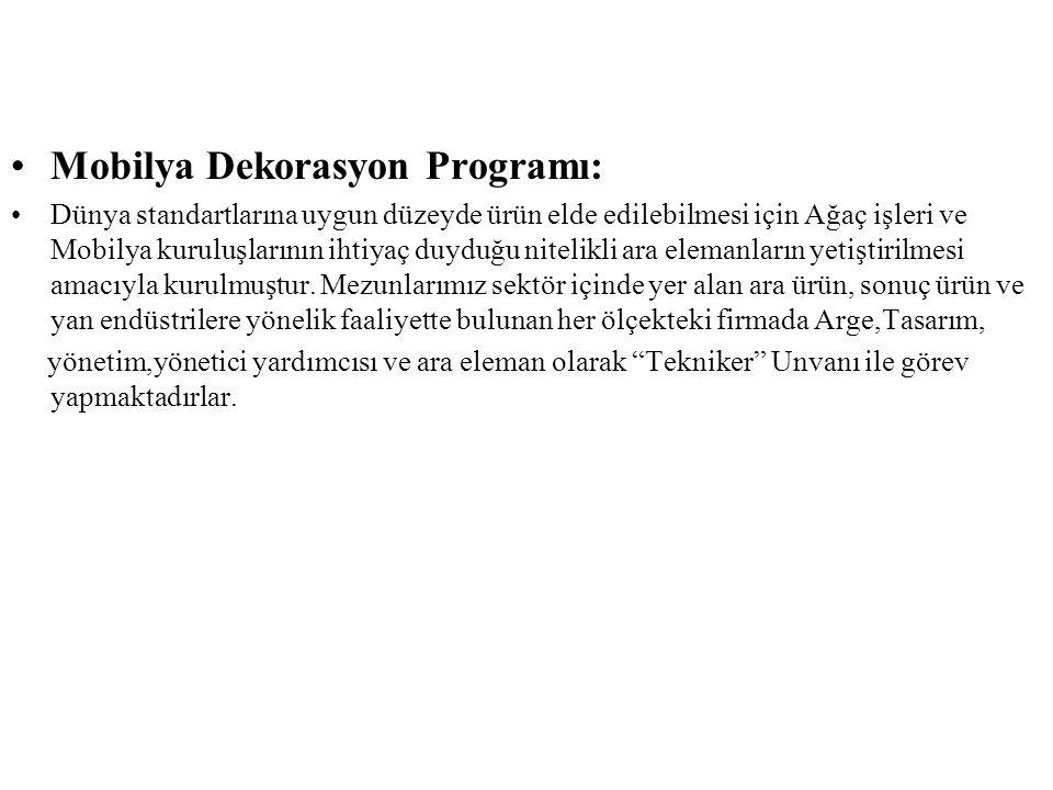 Mobilya Dekorasyon Programı: