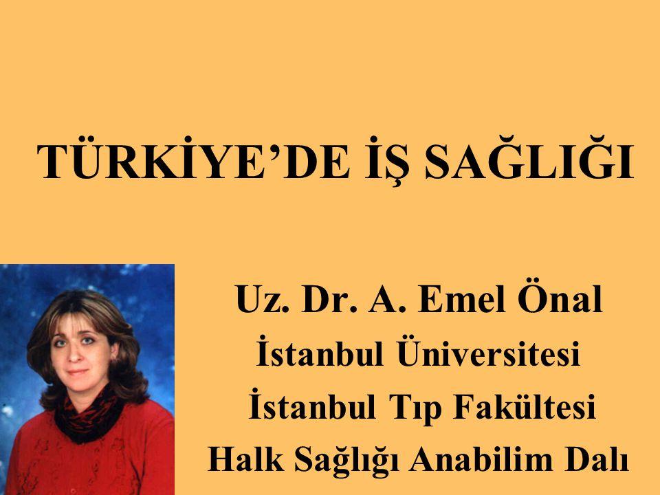 TÜRKİYE'DE İŞ SAĞLIĞI Uz. Dr. A. Emel Önal İstanbul Üniversitesi