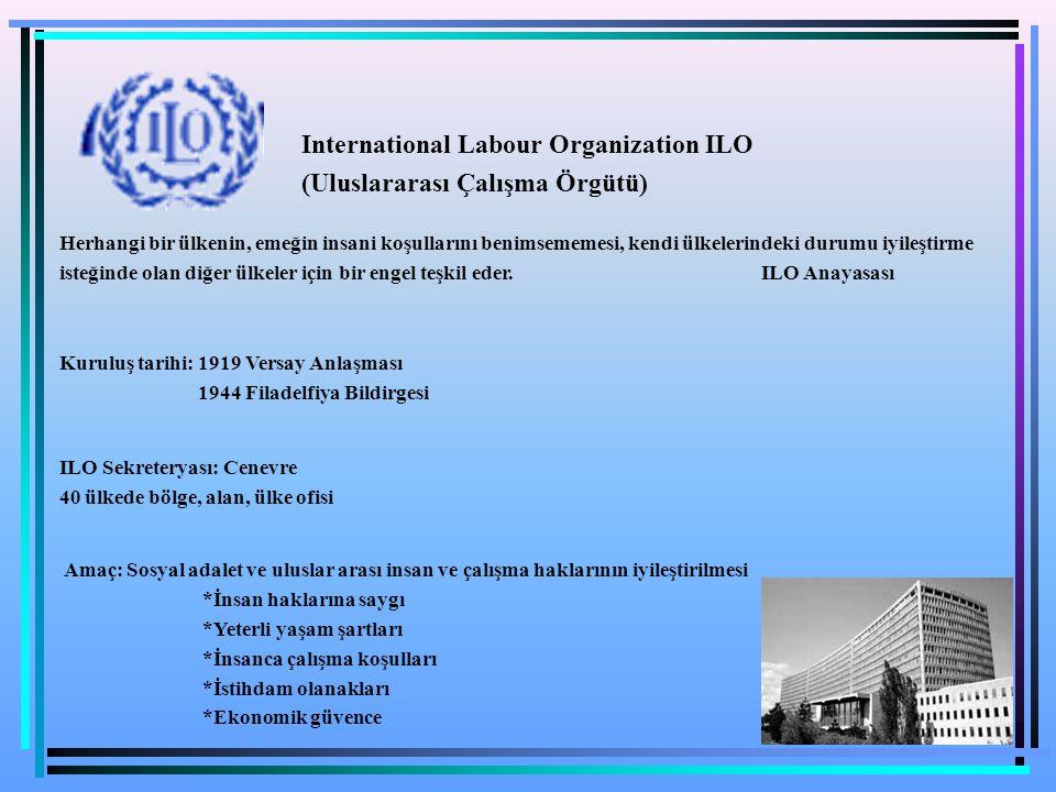 International Labour Organization ILO (Uluslararası Çalışma Örgütü)