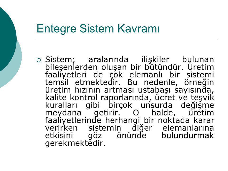 Entegre Sistem Kavramı