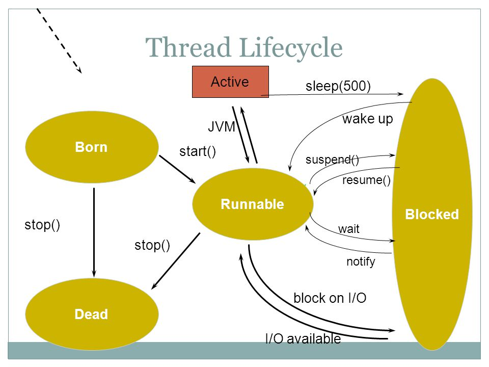 Thread Lifecycle Active sleep(500) wake up JVM Born start() Blocked