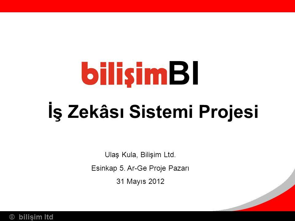 İş Zekâsı Sistemi Projesi
