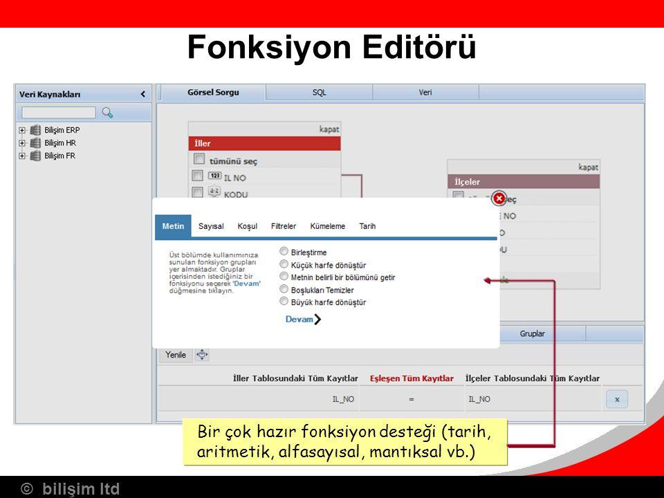 Fonksiyon Editörü Bir çok hazır fonksiyon desteği (tarih, aritmetik, alfasayısal, mantıksal vb.) 16