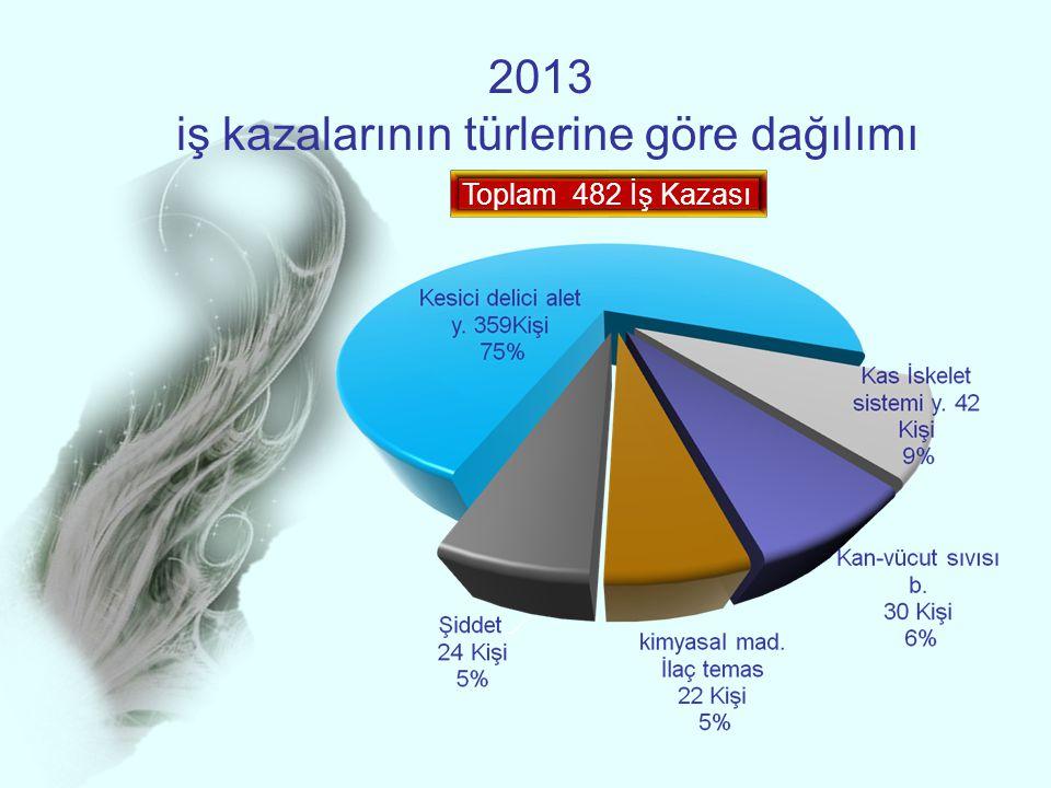 2013 iş kazalarının türlerine göre dağılımı