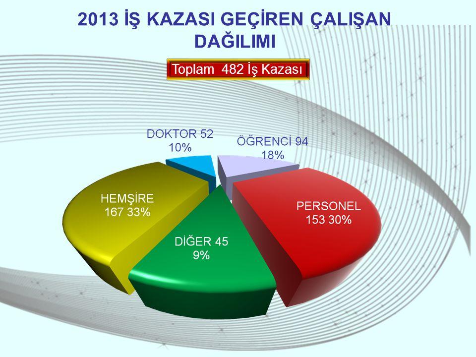 2013 İŞ KAZASI GEÇİREN ÇALIŞAN DAĞILIMI