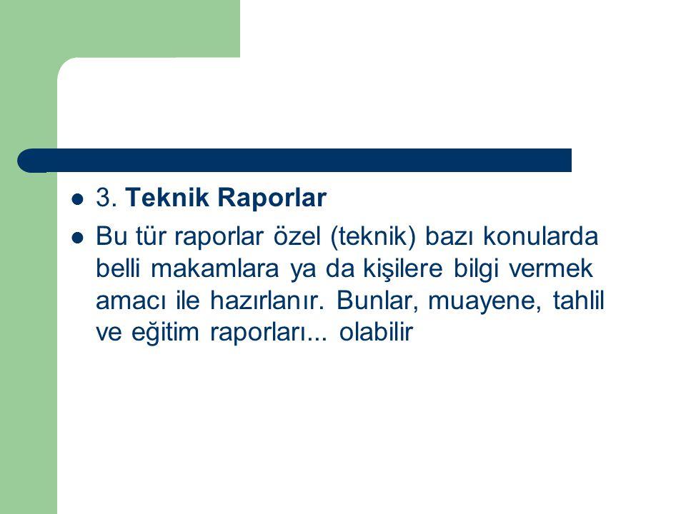 3. Teknik Raporlar