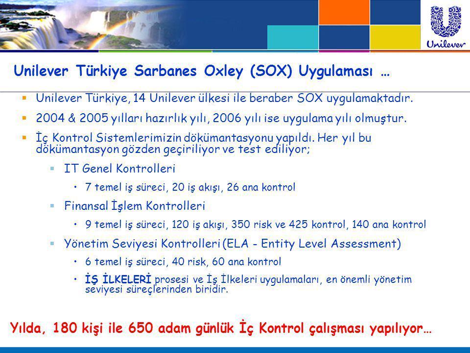 Unilever Türkiye Sarbanes Oxley (SOX) Uygulaması …