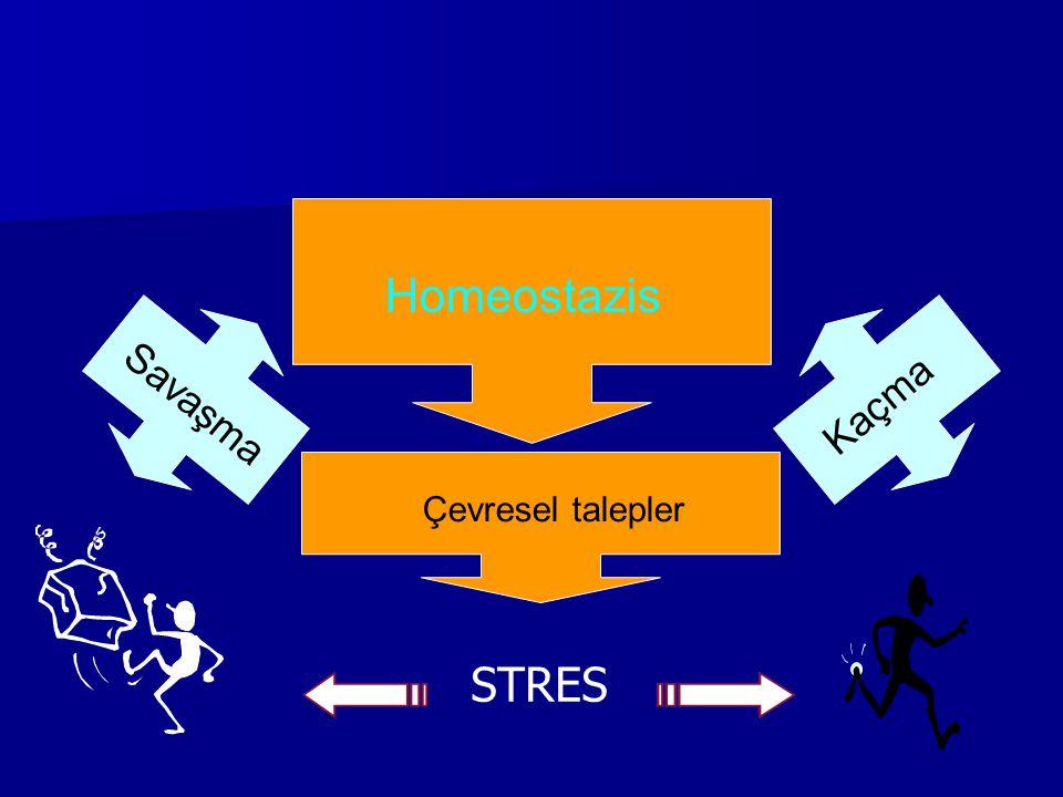 Homeostazis Savaşma Kaçma Çevresel talepler STRES