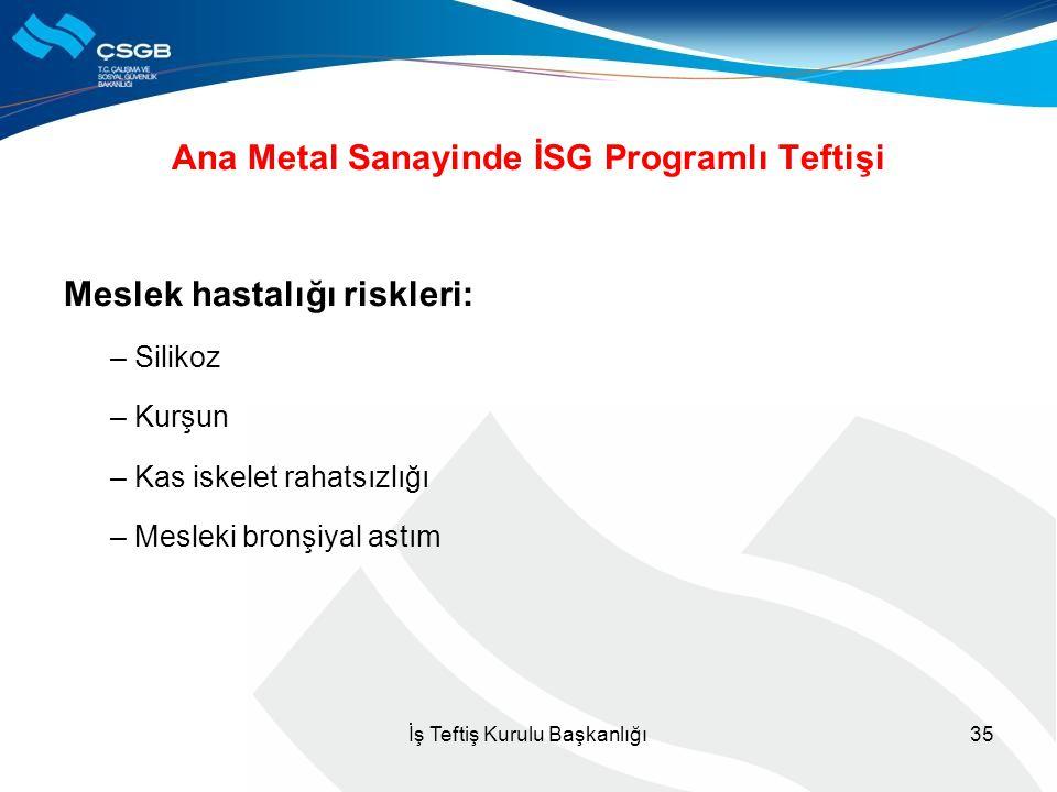 Ana Metal Sanayinde İSG Programlı Teftişi