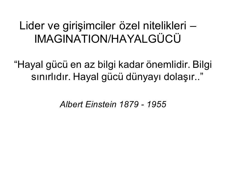 Lider ve girişimciler özel nitelikleri – IMAGINATION/HAYALGÜCÜ