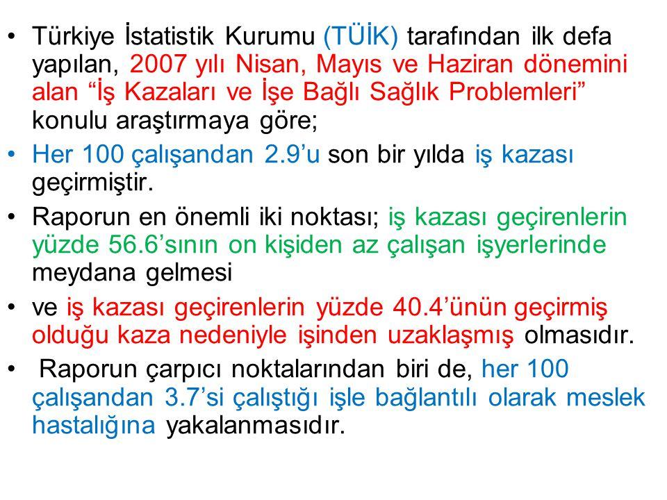 Türkiye İstatistik Kurumu (TÜİK) tarafından ilk defa yapılan, 2007 yılı Nisan, Mayıs ve Haziran dönemini alan İş Kazaları ve İşe Bağlı Sağlık Problemleri konulu araştırmaya göre;