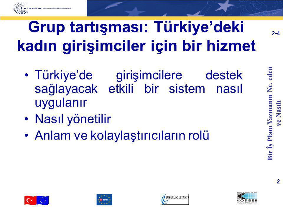 Grup tartışması: Türkiye'deki kadın girişimciler için bir hizmet