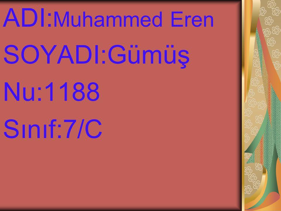 ADI:Muhammed Eren SOYADI:Gümüş Nu:1188 Sınıf:7/C