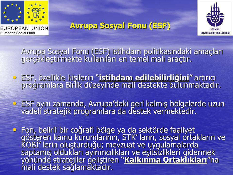 Avrupa Sosyal Fonu (ESF)