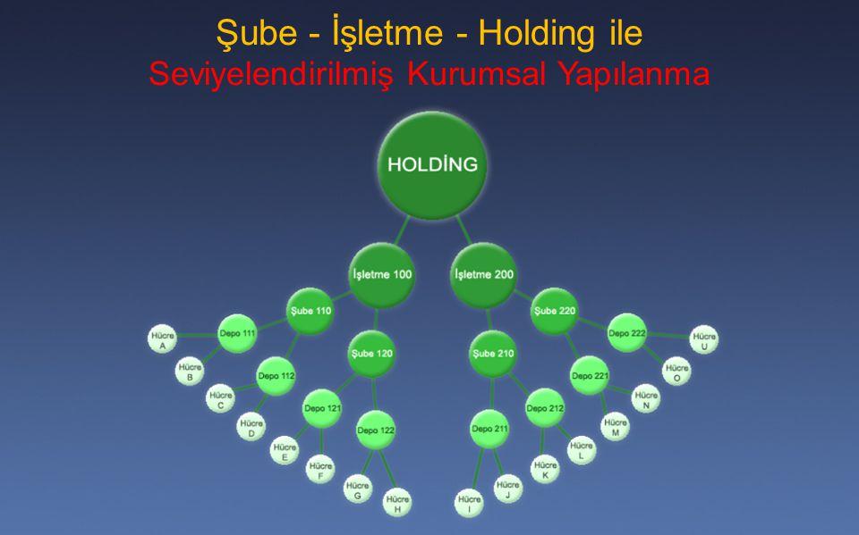 Şube - İşletme - Holding ile Seviyelendirilmiş Kurumsal Yapılanma