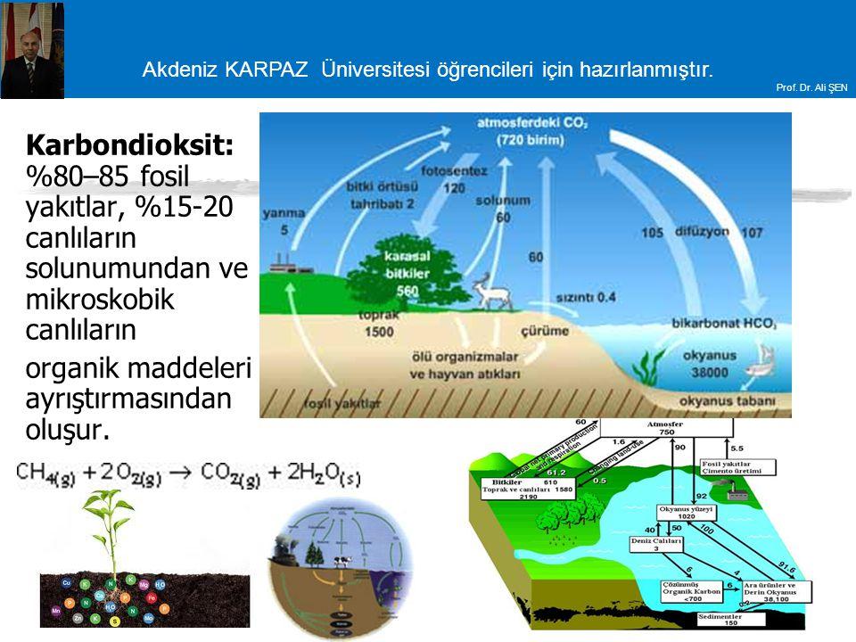 Karbondioksit: %80–85 fosil yakıtlar, %15-20 canlıların solunumundan ve mikroskobik canlıların
