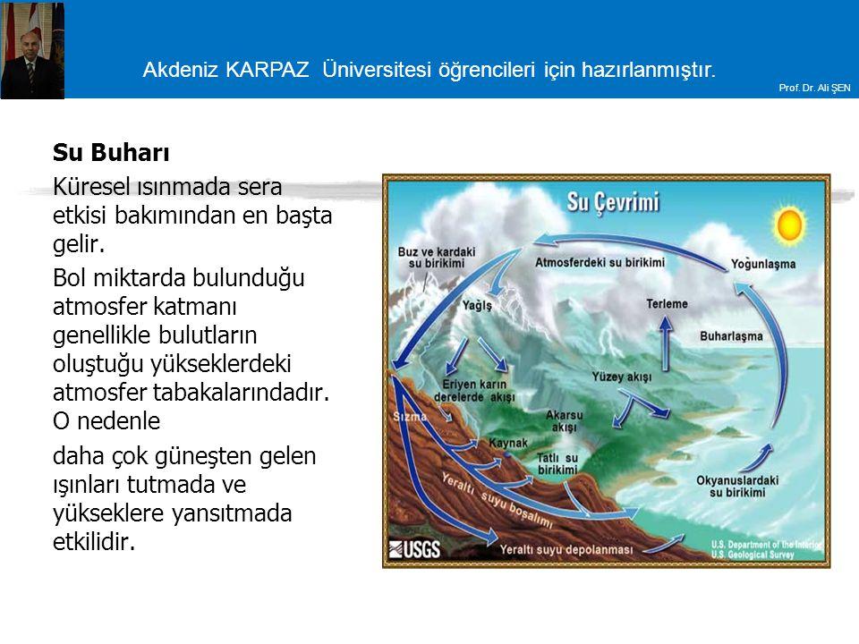 Su Buharı Küresel ısınmada sera etkisi bakımından en başta gelir.