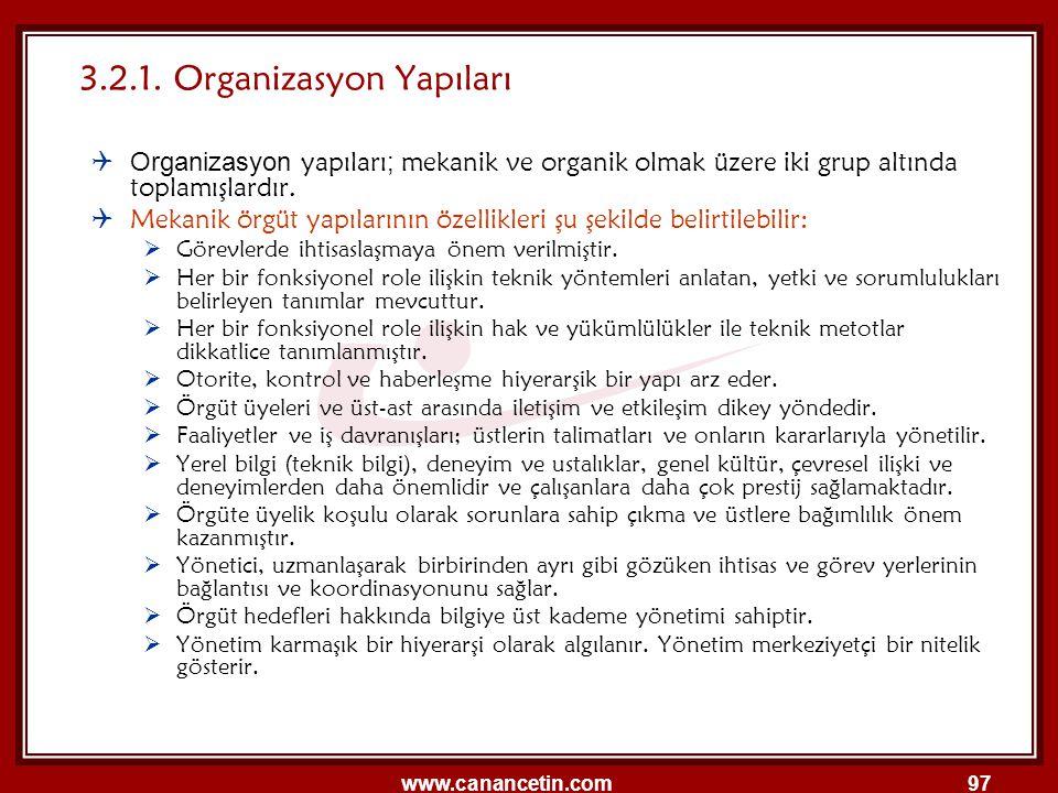 3.2.1. Organizasyon Yapıları