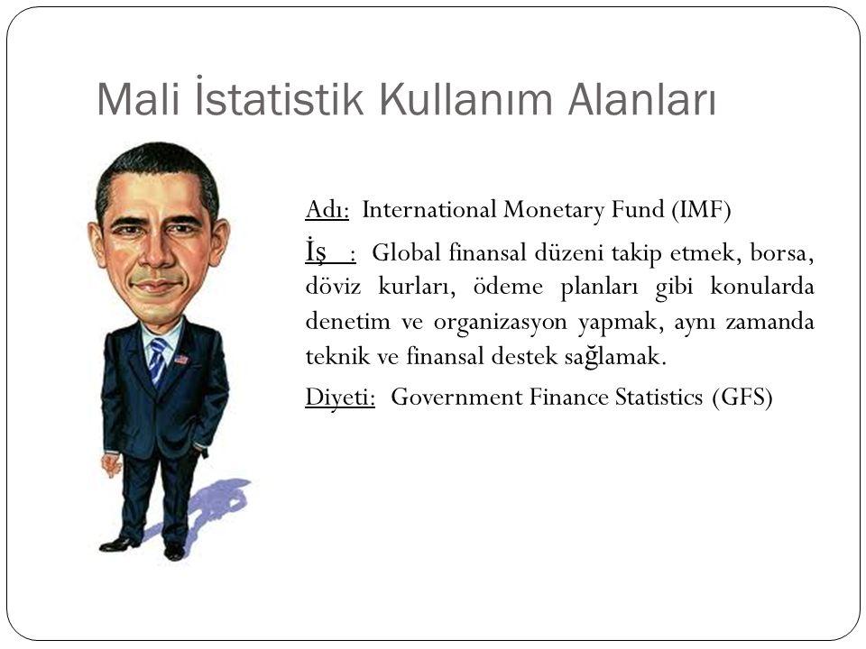 Mali İstatistik Kullanım Alanları