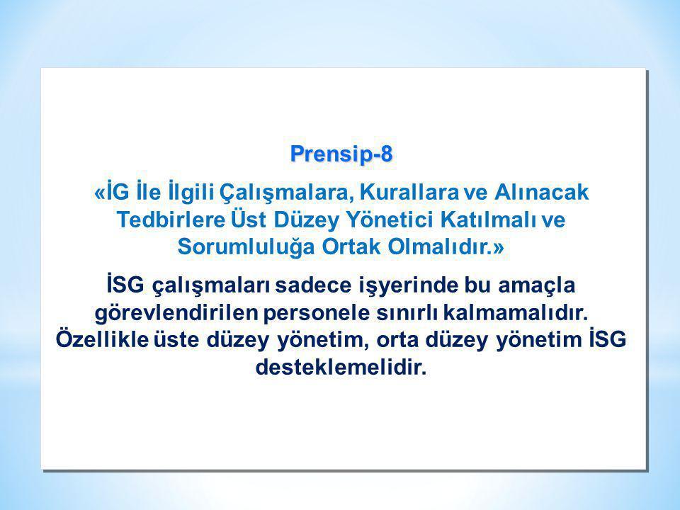 Prensip-8 «İG İle İlgili Çalışmalara, Kurallara ve Alınacak Tedbirlere Üst Düzey Yönetici Katılmalı ve Sorumluluğa Ortak Olmalıdır.»