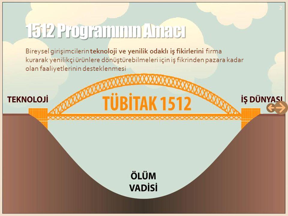 1512 Programının Amacı