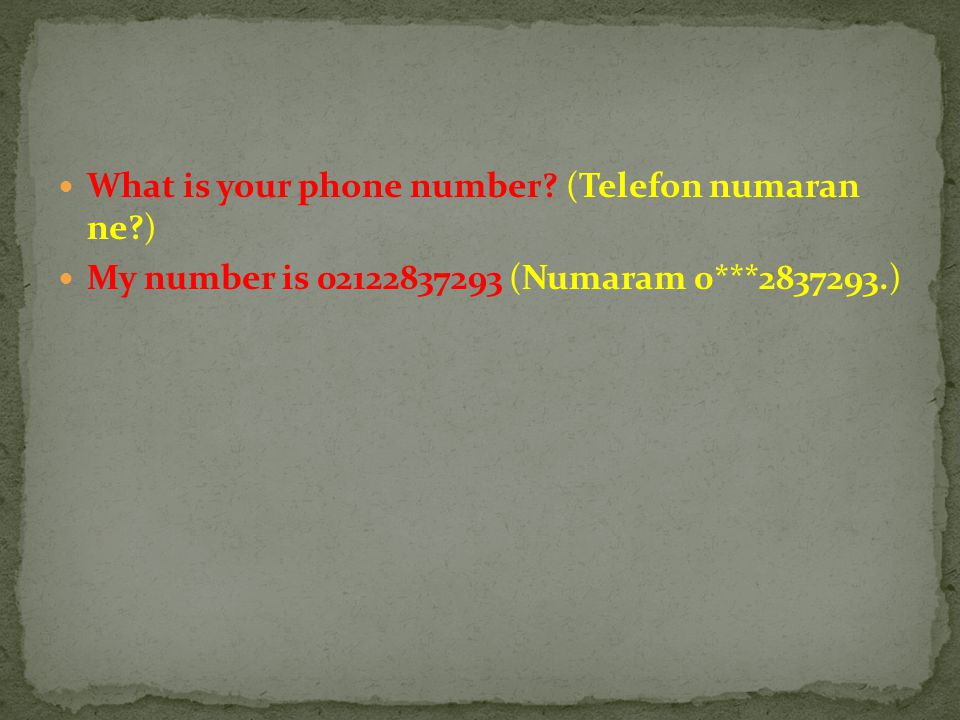 What is your phone number (Telefon numaran ne )