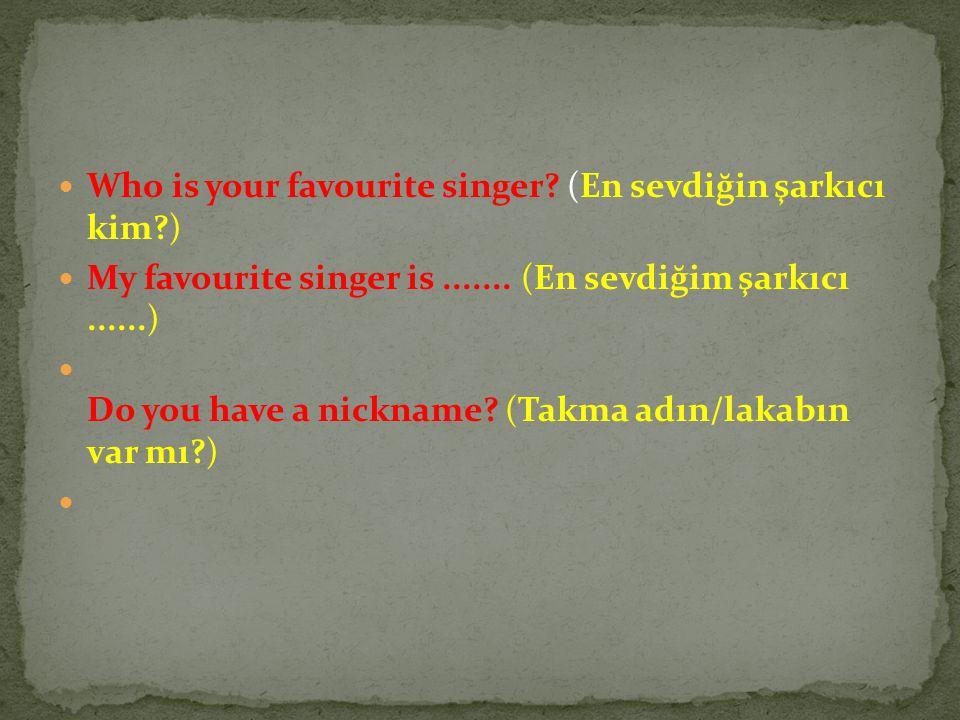 Who is your favourite singer (En sevdiğin şarkıcı kim )