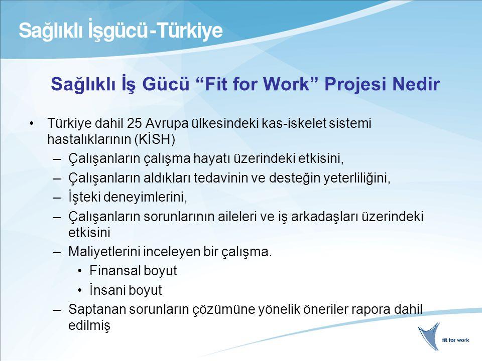 Sağlıklı İş Gücü Fit for Work Projesi Nedir