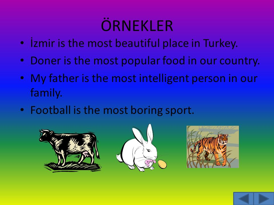 ÖRNEKLER İzmir is the most beautiful place in Turkey.