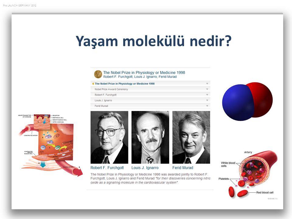 Yaşam molekülü nedir
