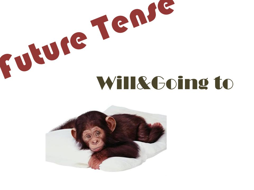 Future Tense Will&Going to