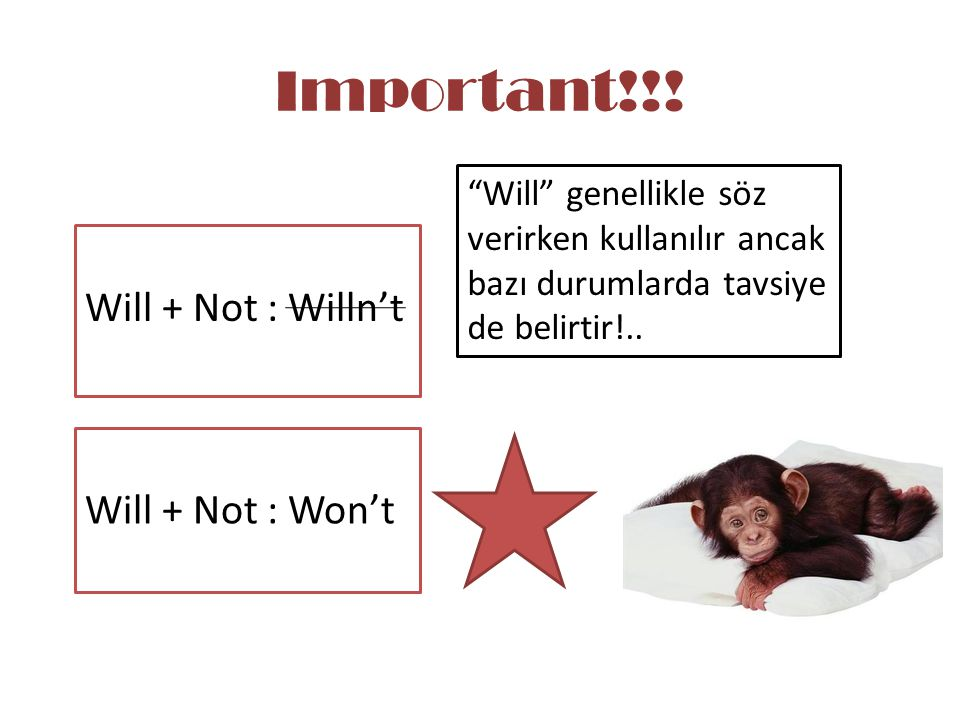 Important!!! Will + Not : Willn't Will + Not : Won't