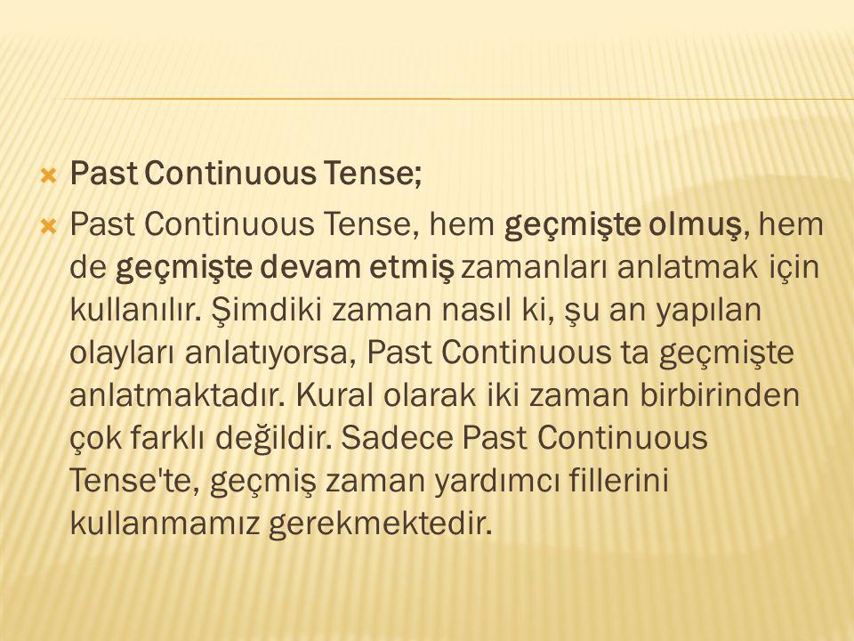 Past Continuous Tense;