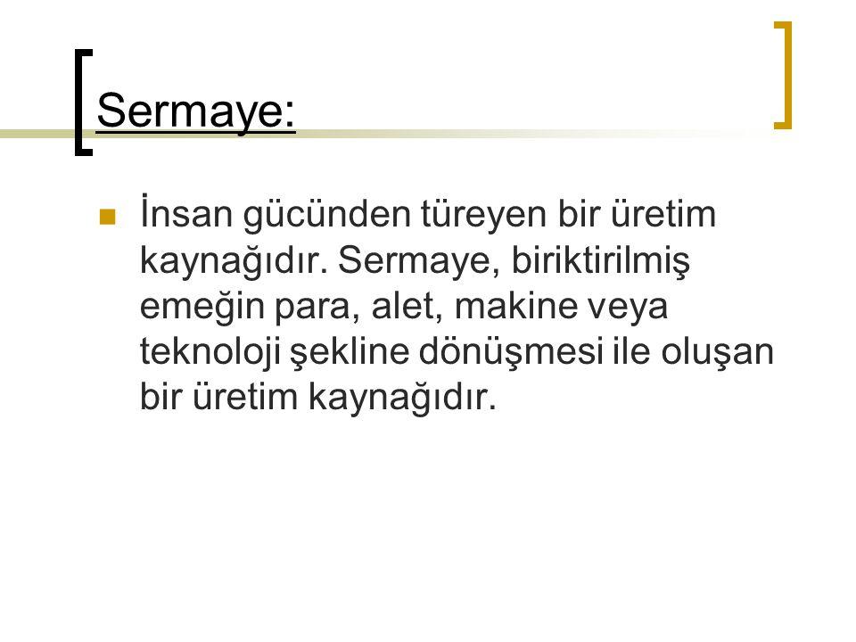 Sermaye: