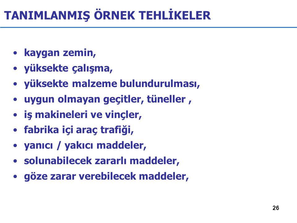 TANIMLANMIŞ ÖRNEK TEHLİKELER