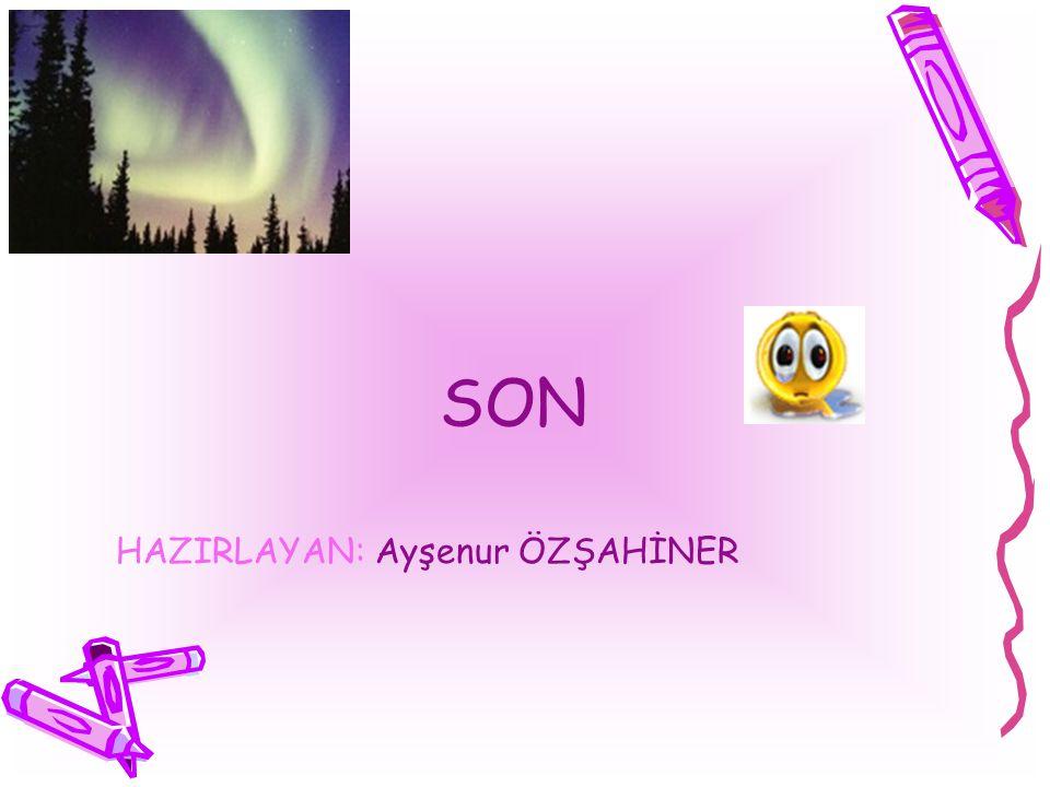 SON HAZIRLAYAN: Ayşenur ÖZŞAHİNER