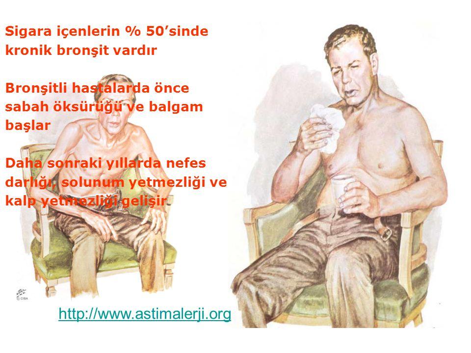 http://www.astimalerji.org Sigara içenlerin % 50'sinde