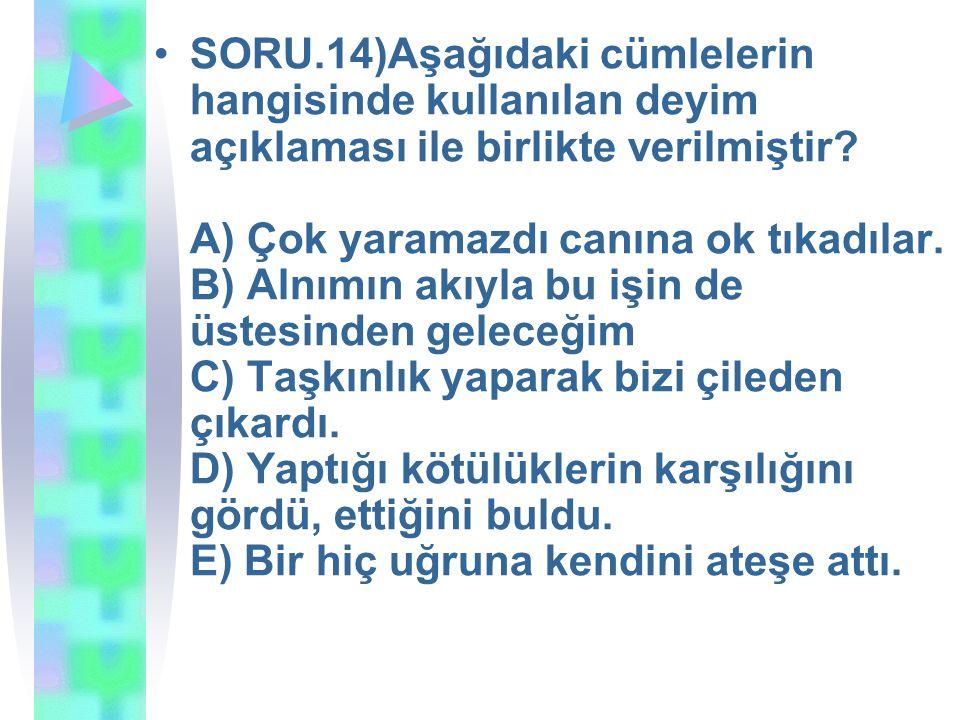 SORU.14)Aşağıdaki cümlelerin hangisinde kullanılan deyim açıklaması ile birlikte verilmiştir.