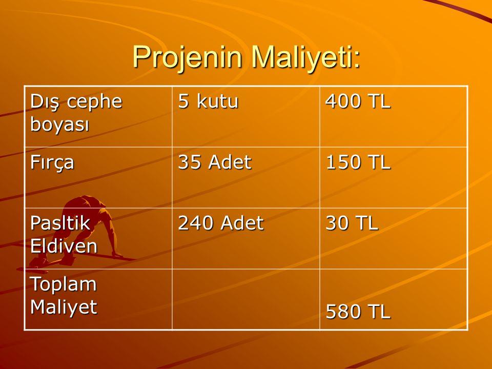 Projenin Maliyeti: Dış cephe boyası 5 kutu 400 TL Fırça 35 Adet 150 TL