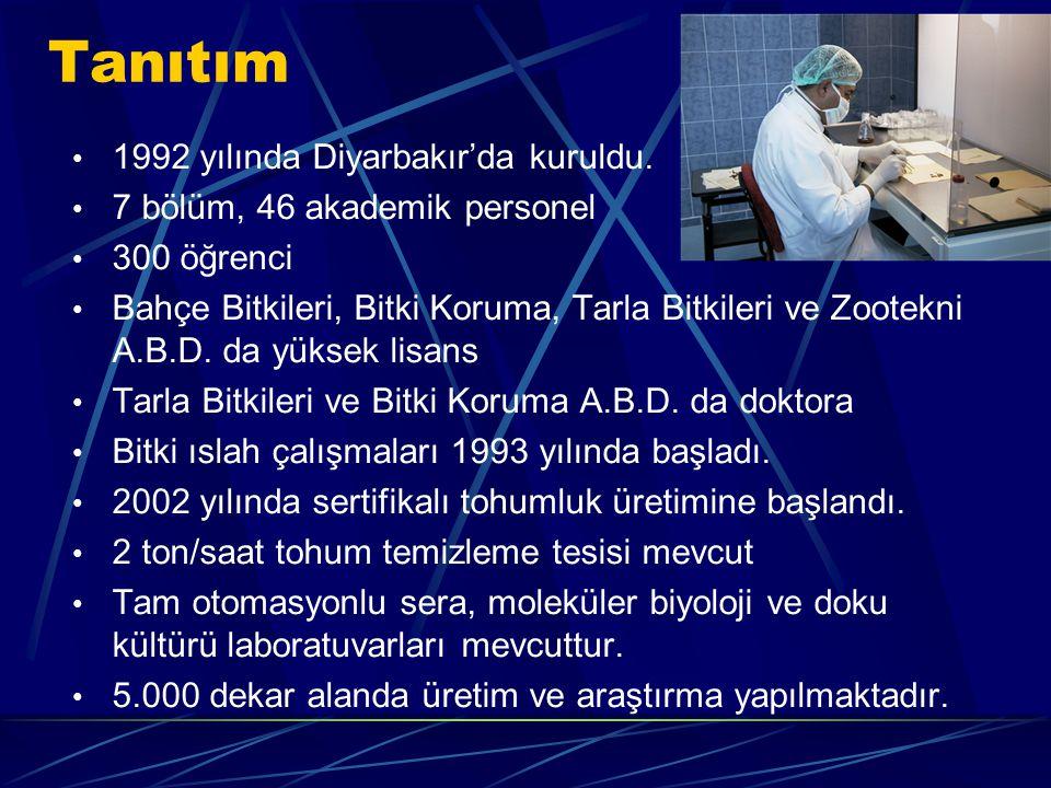 Tanıtım 1992 yılında Diyarbakır'da kuruldu.