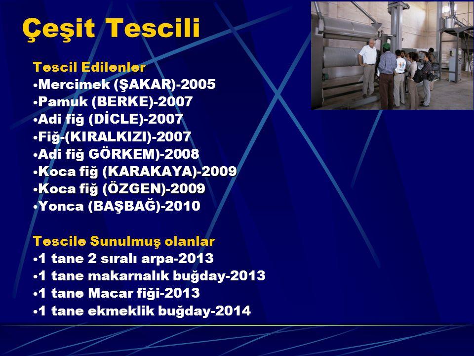 Çeşit Tescili Tescil Edilenler Mercimek (ŞAKAR)-2005