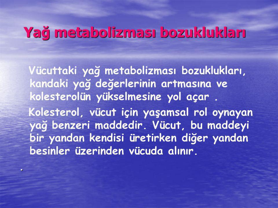 Yağ metabolizması bozuklukları