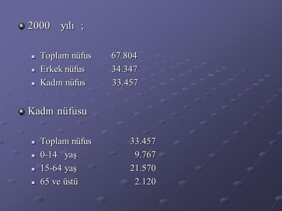 2000 yılı ; Kadın nüfusu Toplam nüfus 67.804 Erkek nüfus 34.347