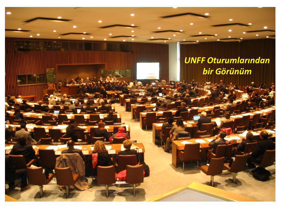 UNFF Oturumlarından bir Görünüm