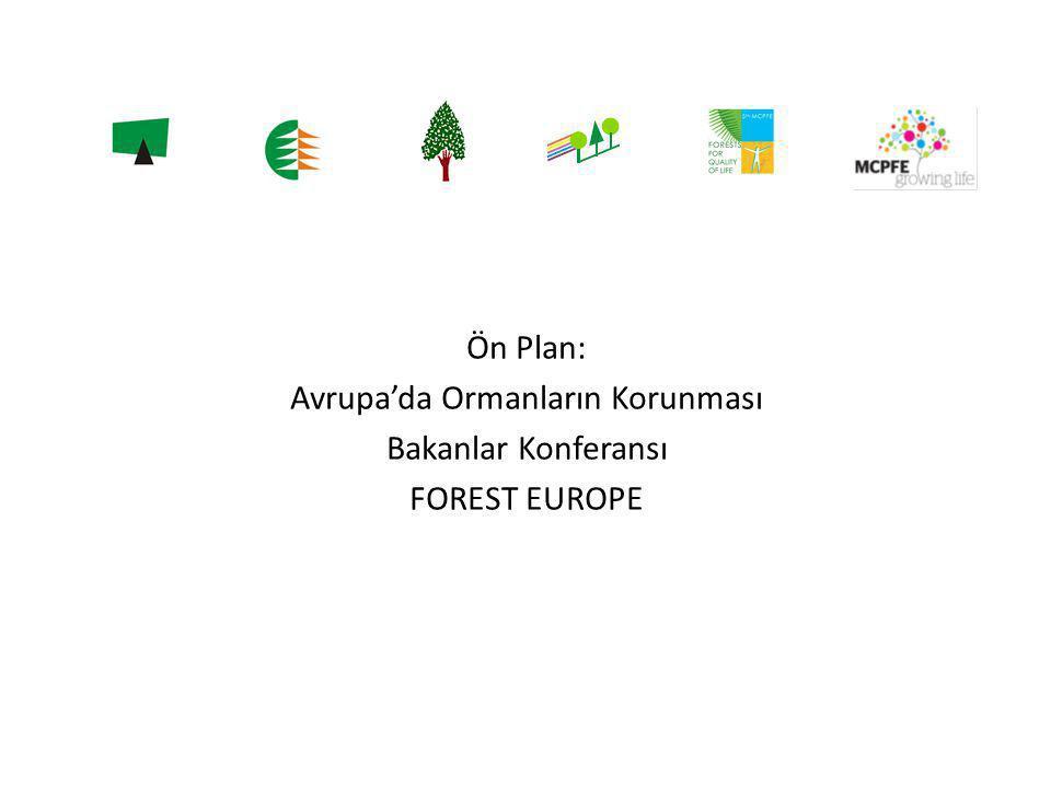 Ön Plan: Avrupa'da Ormanların Korunması Bakanlar Konferansı FOREST EUROPE
